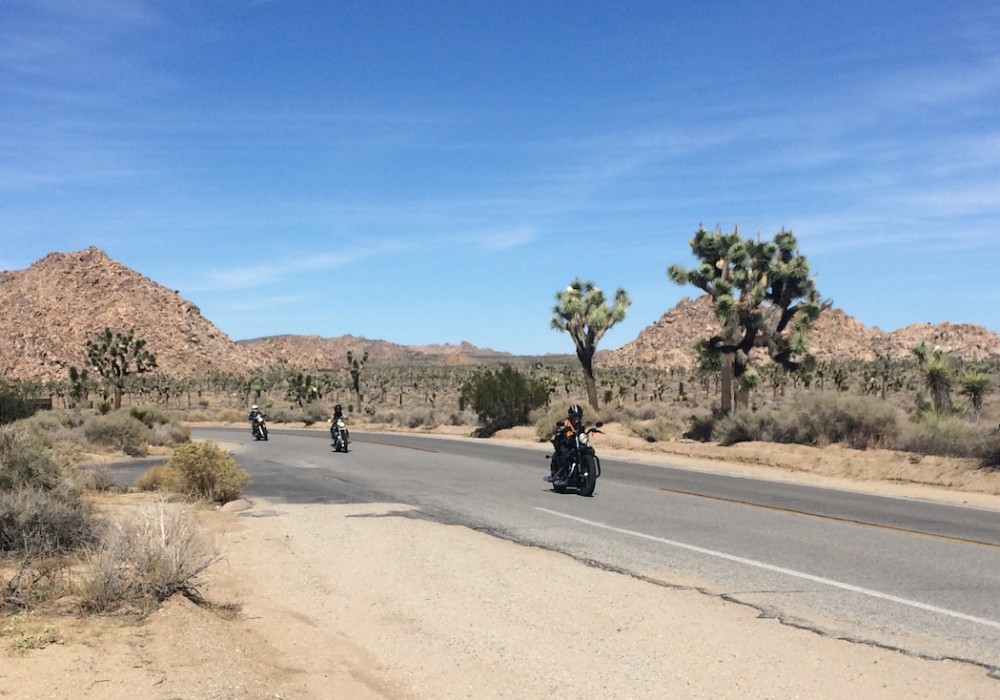 Target Fixation: On the Road and in Real Life